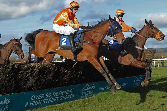 Pet specialist business sponsors the Somerset National